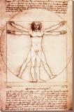 De mens van Vitruvius Kunst op gespannen canvas van  Leonardo da Vinci