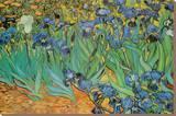 Garden of Irises (Les Irises, Saint-Remy), c. 1889 Trykk på strukket lerret av Vincent van Gogh