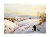 Sheep on the Ridge Giclée-vedos tekijänä Margaret Loxton