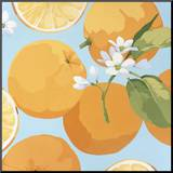 Fresh Oranges Mounted Print by Martha Negley