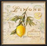 Tuscan Lemon Framed Giclee Print by Angela Staehling