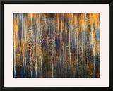 An Autumn Song Framed Giclee Print by Ursula Abresch