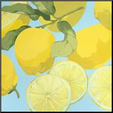 Fresh Lemons Mounted Print by Martha Negley
