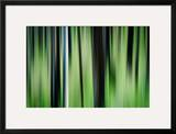 The Burn in Spring Framed Photographic Print by Ursula Abresch