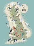 Birds of Great Britain Plaque en métal