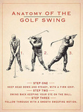 Anatomy of Golf Swing Carteles metálicos