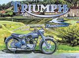 Triumph Thunderbird Tin Sign by Trevor Mitchell