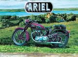 Ariel Tin Sign by Trevor Mitchell