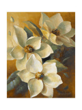 Magnolias Aglow at Sunset II Giclée-Premiumdruck von Lanie Loreth
