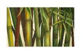 Bamboo on Beige I Premium Giclee-trykk av Patricia Pinto