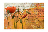 Poppies Composition I Premium Giclée-tryk af Patricia Quintero-Pinto