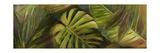 Green for Ever II Premium Giclee-trykk av Patricia Quintero-Pinto