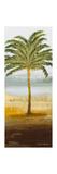 Beach Palm II Reproduction giclée Premium par Michael Marcon