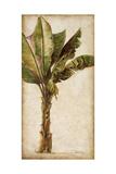Tropic Banana I Posters by Patricia Quintero-Pinto