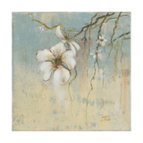 Fleurs de cerisier I Reproduction giclée Premium par Patricia Quintero-Pinto