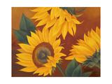 Sunflowers II Premium Giclee Print by Vivien Rhyan