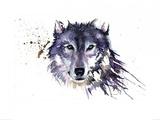 Snow Wolf Kunst af Sarah Stokes