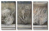 Desert Form Pósters por Elena Ray