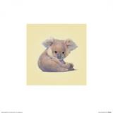 Koala Poster von John Butler Art