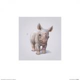 Rhino Julisteet tekijänä John Butler Art