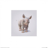 Rhino Prints by John Butler Art