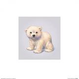 Polar Bear Posters by John Butler Art