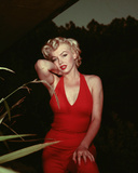 Marilyn Monroe 1954 Photo