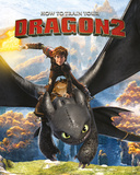 How to train your Dragon 2 - Rocks Poster