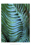 Emerald Feathering II Posters by Danielle Harrington