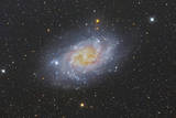 The Triangulum Galaxy, also known as Messier 33 Photographic Print