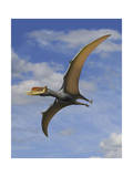 Dsungaripterus Weii, a Pterosaur That from the Early Cretaceous Period Stampe