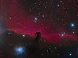 The Horsehead Nebula Fotografisk trykk