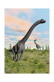 Two Brachiosaurus Dinosaurs in a Prehistoric Environment Poster
