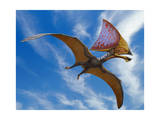 Tupandactylus Imperator, a Pterosaur from the Early Cretaceous Period Poster