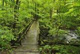 Wooden Bridge, Holzbachtal, Westerwald, Rhineland-Palatinate, Germany, Europe Toile tendue sur châssis par Jochen Schlenker
