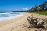 Sandy Beach on Kapaa Beach Park on the Island of Kauai, Hawaii, United States of America, Pacific Fotografisk trykk av Michael Runkel