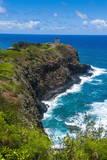 Kilauea Point National Wildlife Refuge Fotografisk trykk av Michael Runkel