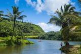 Wailua River. Kauai, Hawaii, United States of America, Pacific Fotografisk trykk av Michael Runkel