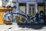 Graffiti Art Work on Houses in Lapa, Rio De Janeiro, Brazil, South America Fotografisk tryk af Michael Runkel