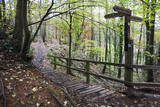 Footpath Sign at Milners Fork in Nidd Gorge Woods Near Bilton Photographic Print by Mark Sunderland