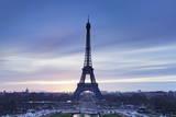 Eiffel Tower, Paris, Ile De France, France, Europe Photographic Print by Markus Lange