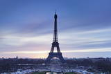 Eiffel Tower, Paris, Ile De France, France, Europe Stampa fotografica di Markus Lange