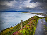 A Country Road Down to Rossbeigh in County Kerry Photographic Print by Chris Hill