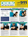 Adult Choking Poster Poster