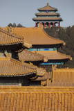 The Imperial Yellow Tiled Roofs of the Forbidden City Glow in the Winter Sun in Beijing Photographic Print by Adrian Bradshaw