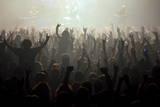 Music Fans at a Concert Fotografie-Druck von Jim Hollander