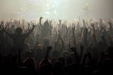 Music Fans at a Concert Photographic Print by Jim Hollander