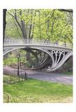 WH Bridge Posters af Marilu Windvand