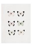 Butterfly Six Pack Art by Tracey Telik