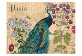Paris Peacock Botanical 3 Poster par Elizabeth Jordan